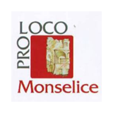https://www.consorzioeuganeo.com/wp-content/uploads/2020/12/proloco-monselice-160x160.png