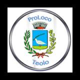 https://www.consorzioeuganeo.com/wp-content/uploads/2020/12/proloco-teolo-160x160.png